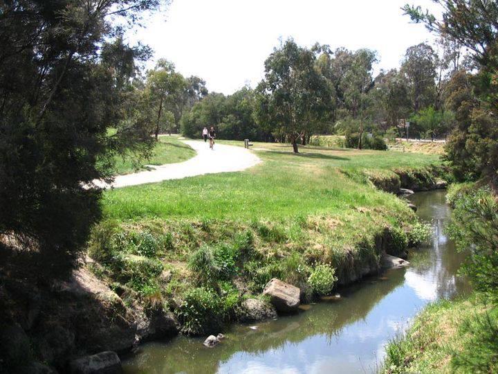 Surrey Hills Victoria