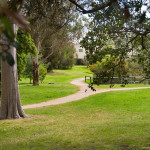 Post image for Kew Suburb Information