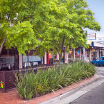 Post image for Mount Waverley Suburb Information